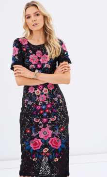 2017-03-08 12_06_59-Embroidered Lace Pencil Dress by Oasis Online _ THE ICONIC _ Australia
